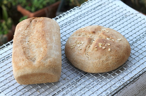 Recipe: Whole Grain Bread