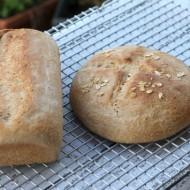 Recipe: Whole Grain Bread