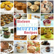 16 Muffin Recipes: Part 1