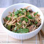 Stir Fry Vegetable Lo Mein