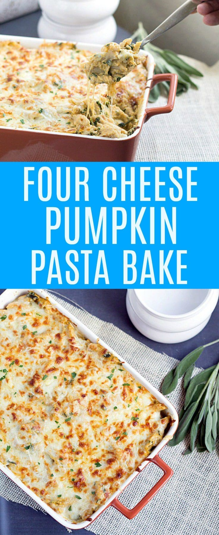 Four Cheese Pumpkin Pasta Bake. This cheesy bold pumpkin pasta bake is easy to make and perfect for dinner!
