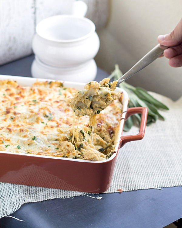 Four Cheese Pumpkin Pasta Bake form www.thisgalcooks.com #pumpkin #pasta #savorydishes