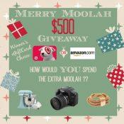 Merry Moolah $500 Giftcard Giveaway
