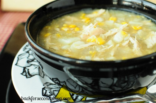 Skinny Slow Cooker Chicken & Veggie Chowder by Back for Seconds