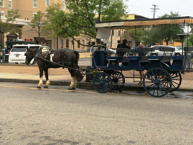Carriage Tours located near City Market