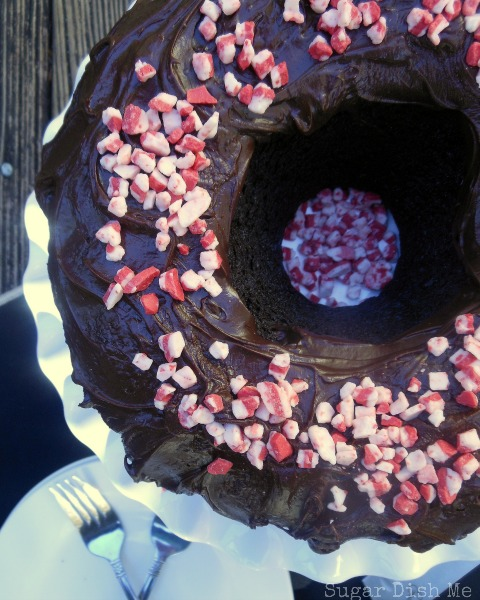 Peppermint-Fudge-Cake-1
