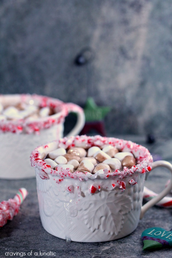 Peppermint-Hot-Chocolate-and-Peppermint-Wands-2