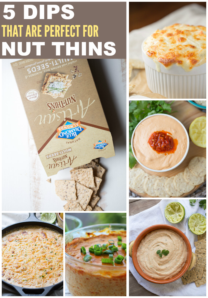 5 Dips That Are Perfect For Nut Thins   This Gal Cooks