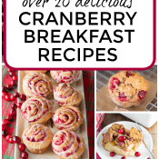 Cranberry Breakfast Recipes (Over 20!)