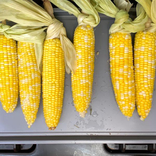 oven-roasted-corn-on-the-cob-on-baking-sheet