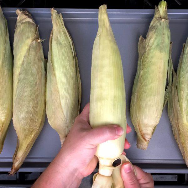 tear-off-the-corn-husks