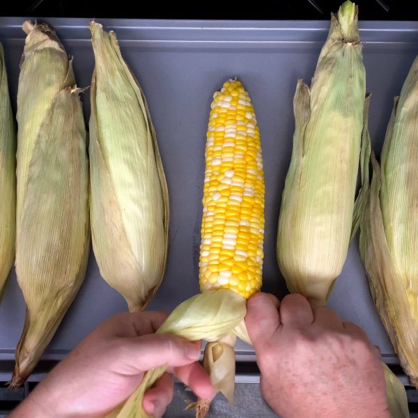 tie-the-corn-husks-with-an-overhand-knot